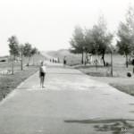 Początki Parku Szczęśliwickiego – 1970 r.