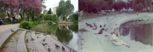 Stawik w parku im. Z. Malickiego na Rakowcu przy ul. Wiślickiej. </br>Fot. Magdalena Skibińska - 2014 r. / Fot. FotoOchota - 1987 r.